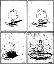 calvin-rain